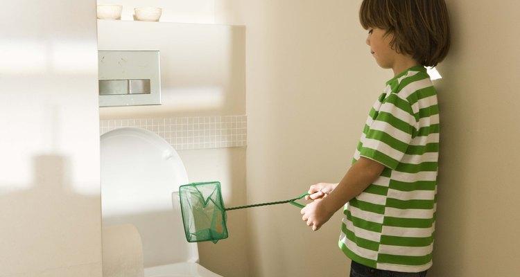 Al instalar nuevos accesorios en tu baño, asegurarte de que las líneas de suministro de agua y los desagües estén correctamente colocados hace más que ayudarte a cumplir las normas locales.