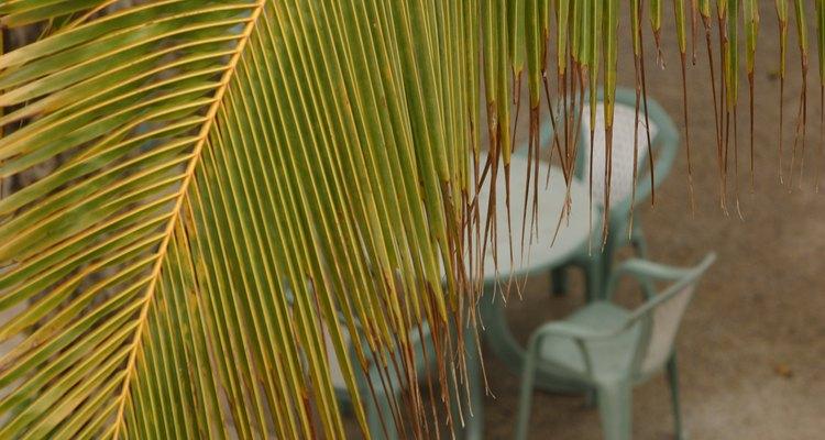 La totalidad de la silla, excepto por el área de estarcido, debe ser cubierta.
