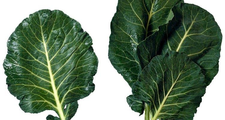 Puedes congelar tanto hojas de col de cosecha propia como comprado en una tienda.
