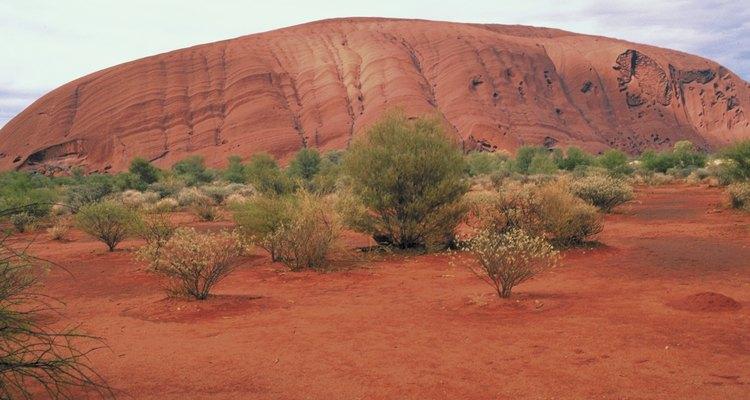 Com o aquecimento global, as pradarias podem se tornar desertos