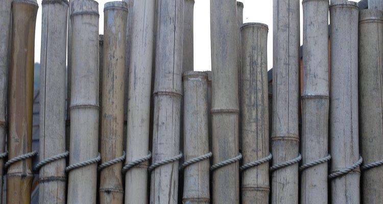 Como un recurso renovable, el bambú es una opción ecológica.