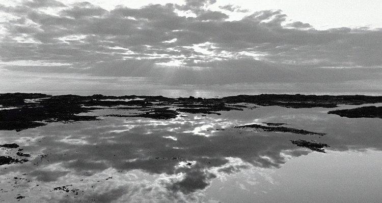 Las fotos de la naturaleza pueden ser consideradas paisajismo.