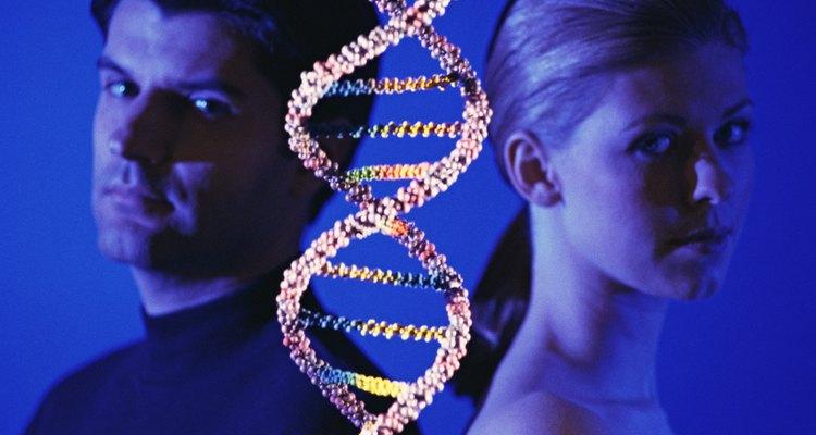 El ADN determina en gran parte el color del cabello.