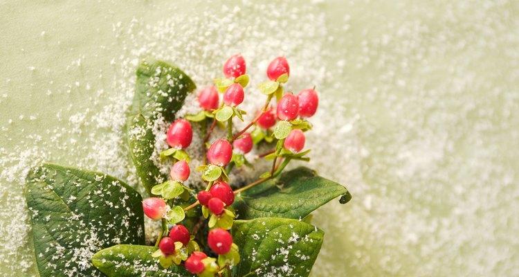 La nieve en aerosol mejora las decoraciones de las festividades.