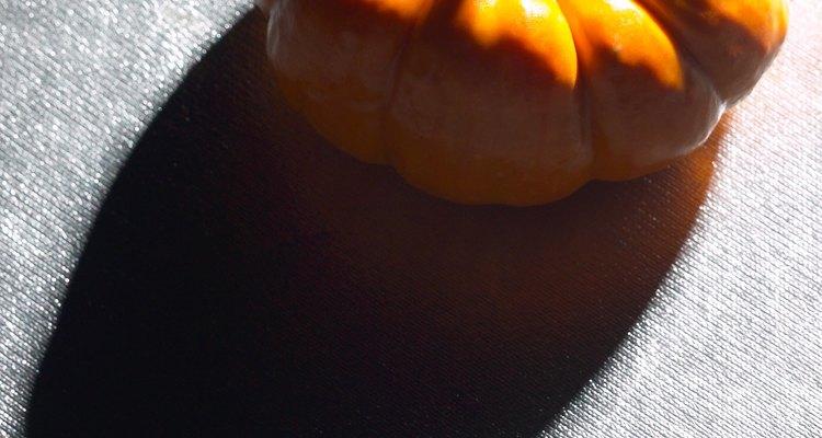 Algumas colheres de purê de abóbora podem acalmar o estômago de um cachorro