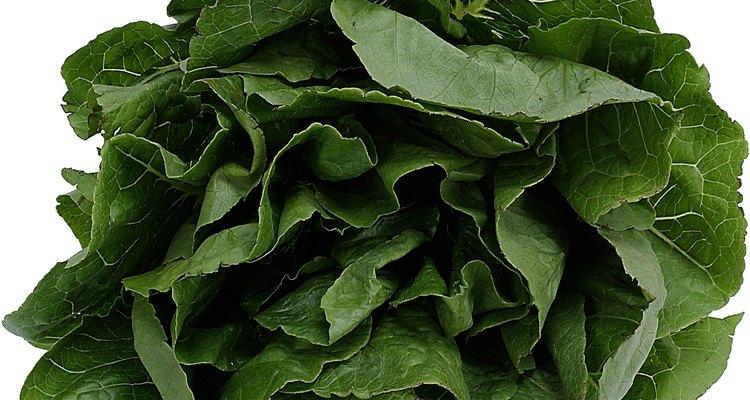 Las hojas de espinaca tienen múltiples pigmentos.