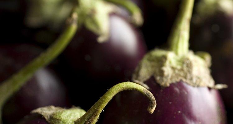 La piel color púrpura oscura de la  berenjena europea inspira los usos modernos de este versátil color.