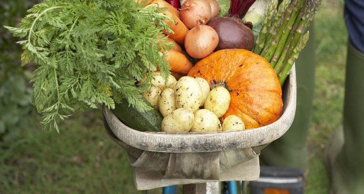 La melaza como ayuda para el suelo puede mejorar los rendimientos de los cultivos.