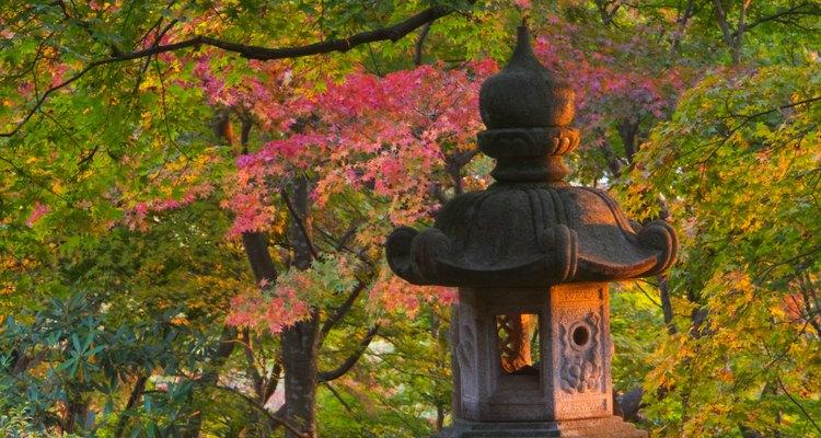 Japón: armonía entre el hombre y la naturaleza.