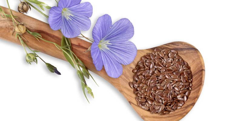 Flax seeds and linum flowers, flax