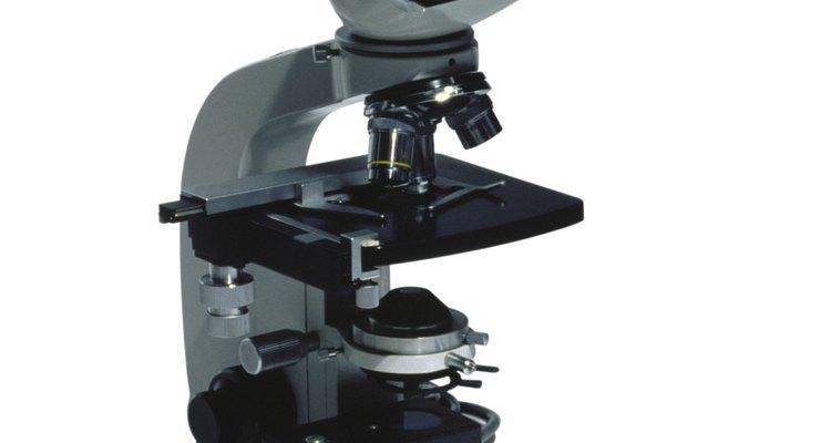 Vários tipos de lâminas podem ser utilizadas em microscópios modernos