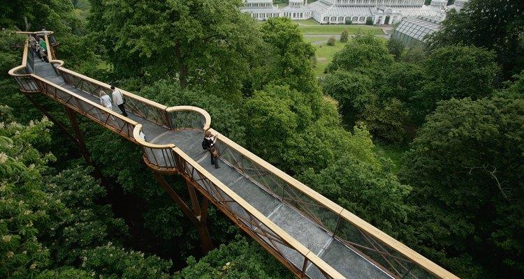 Kew Walkway: não é recomendada para aqueles que tem vertigem