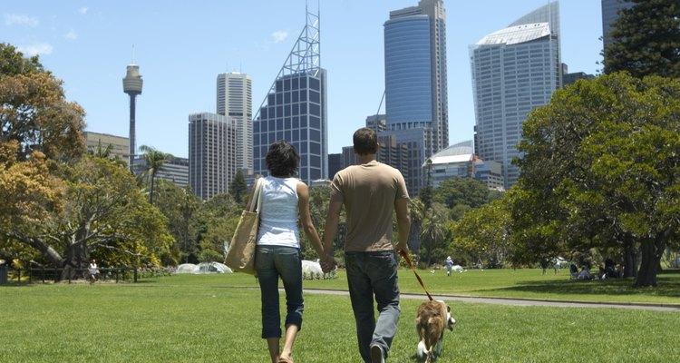 La vida en la ciudad tiene beneficios e inconvenientes.