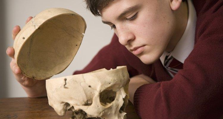 Los adolescentes usualmente prefieren el aprendizaje práctico.