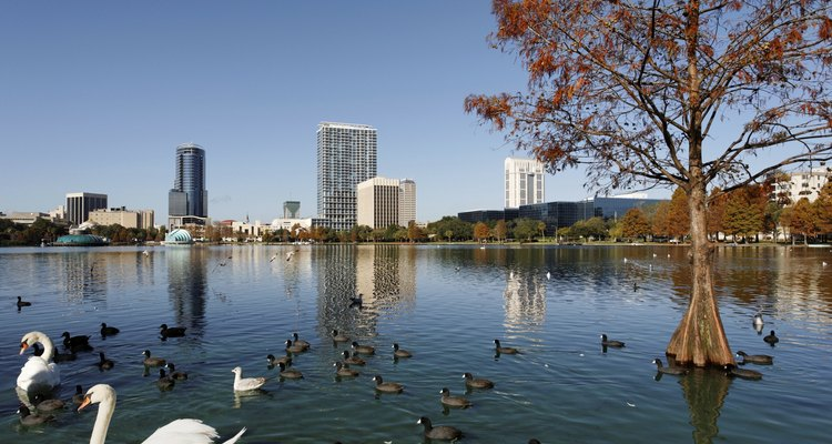 Orlando es un destino de diversión para familias y parejas por igual.