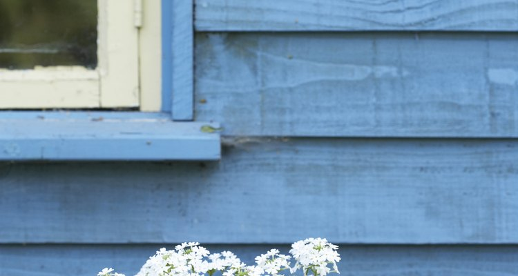 Weatherboards can be painted in a variety of colours.