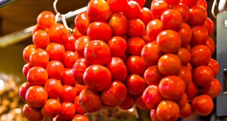 Los tomates pequeños crecen en contenedores.