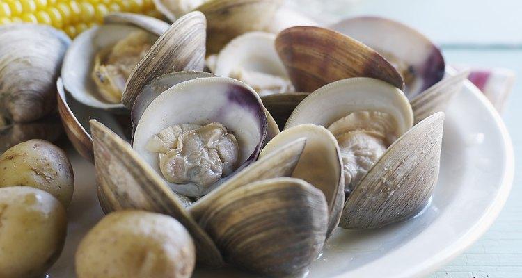 Hay muchas variedades de moluscos, todos ellos comestibles.