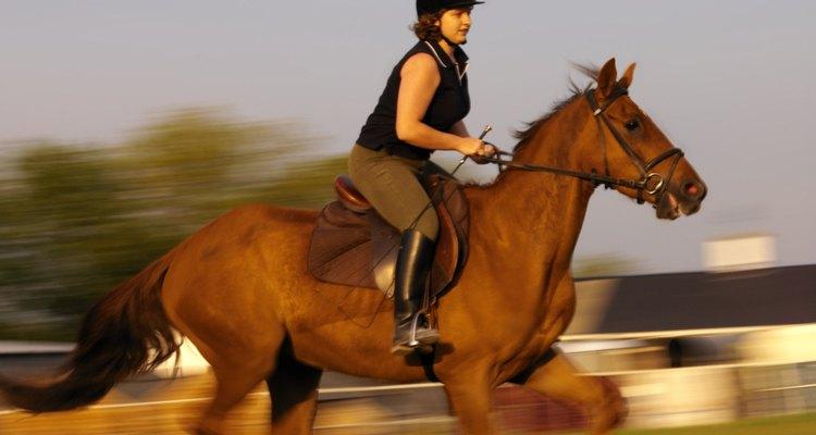 La tensión se traspasa al caballo.