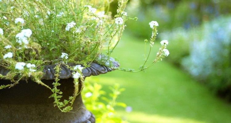 Los Jardines de Vizcaya tienen gran atractivo cultural.