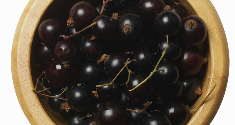 Black currants are small and black in colour.