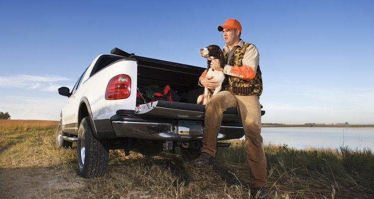 Transporte seu cão na caçamba com conforto e segurança