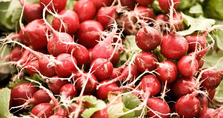 Una tasa de crecimiento rápido produce mejor sabor para los rábanos.