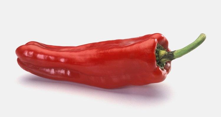 Desidrate pimentas vermelhas malaguetas para preservá-las por meses