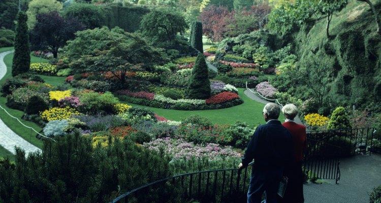 Elige las plantas según su forma y estructura si quieres diseñar un paisaje hermoso y llamativo.