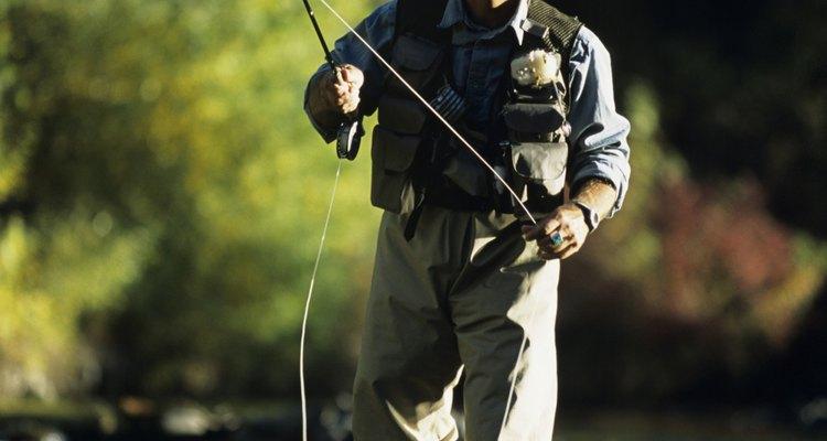 Pesca, remo y observación de la vida silvestre son actividades de las que podrás disfrutar en el Campamento estatal forestal del río Manistee.