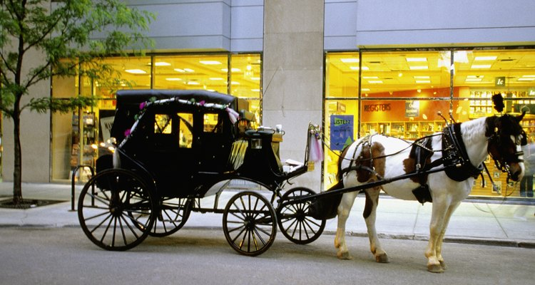 Arriving in a horse-drawn carriage will make her feel like a princess.