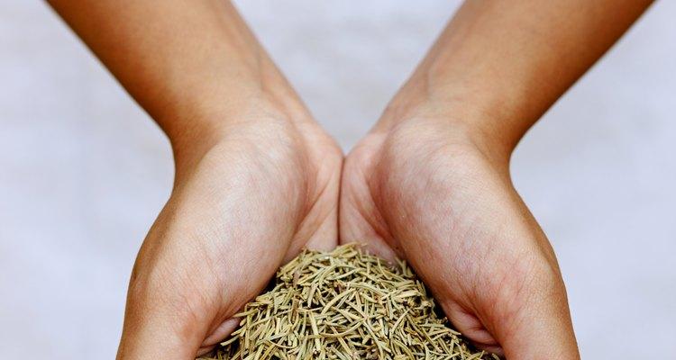A utilização de ervas é tão efetiva quanto remédios