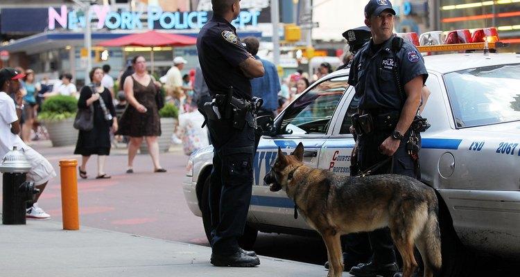 Detectives de la policía de Nueva York