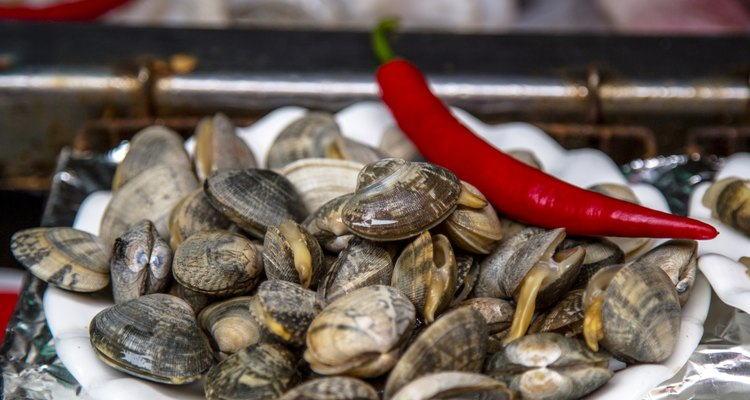 fresh clams preparing for cooking
