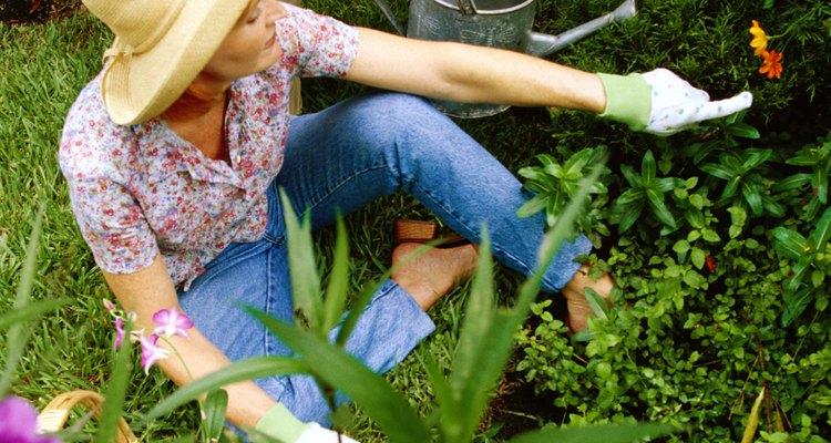 Use lona preta com herbicida encapsulado em seu tecido para uma eficiência máxima