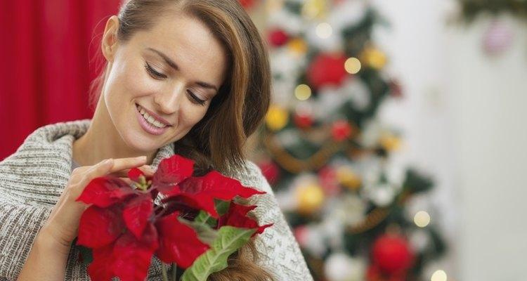 Elige un arreglo que contenga flores que le gusten a quien lo va a recibir y que al mismo tiempo tenga un aire navideño.