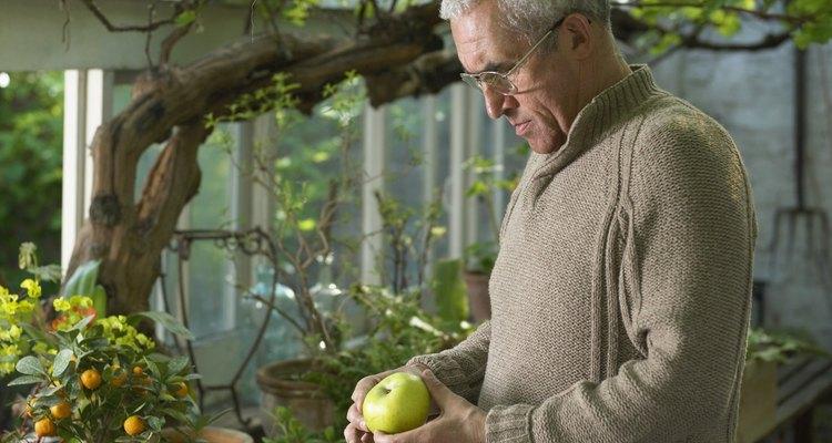 Preparar a la antigua jalea de manzana con manzanas frescas o jugo con manzanas procesadas.