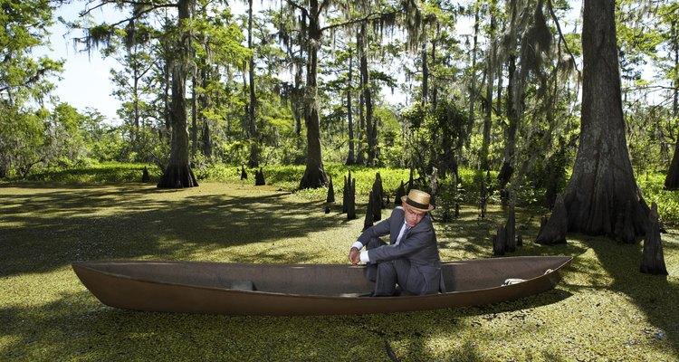 En Luisiana, puedes acampar cerca de áreas naturales como pantanos y humedales.