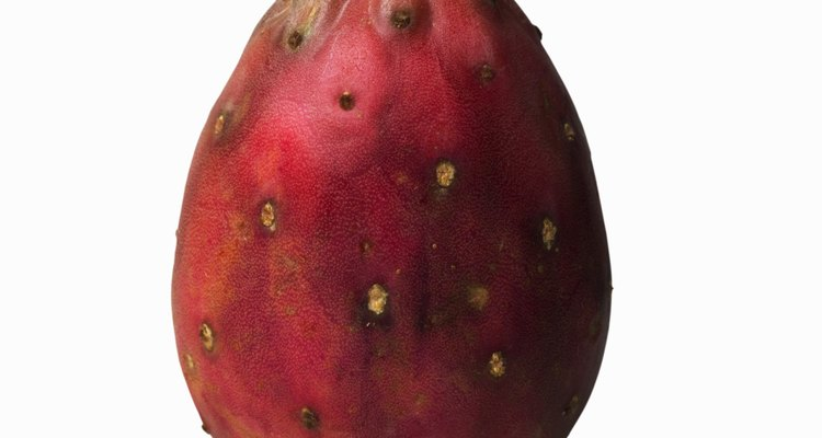 A pitaia é o fruto da planta noturna Cereus
