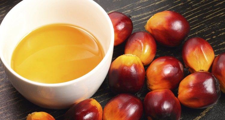 Fruto de palma y aceite.