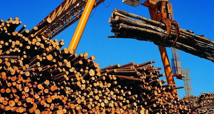 La madera es uno de los recursos explotados en Nueva Inglaterra (Noreste).