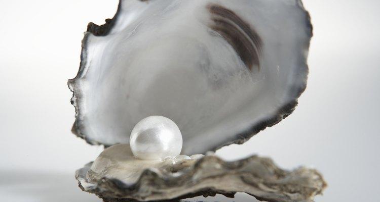 As ostras são famosas por suas pérolas naturais