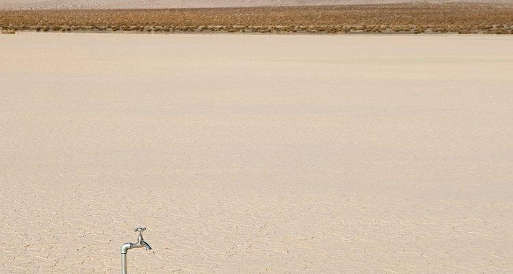 Varios de los tratados mexicanos buscan combatir el cambio climático.