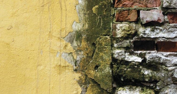 La humedad y los problemas subyacentes de la construcción contribuyen a la eflorescencia.