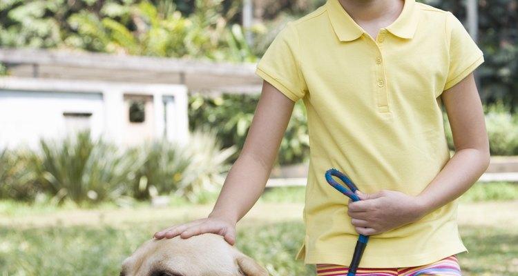 Remova o cheiro de urina de cachorro em seu gramado sintético