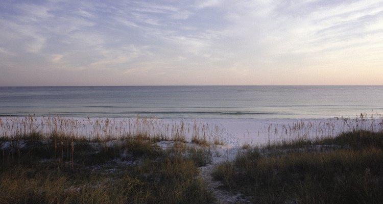 Muchos campamentos en Florida le permiten a los acampantes instalarse cerca del océano Atlántico.