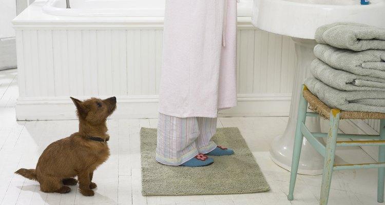 Os tapetes com revestimento devem ser lavados para desinfecção uma vez por mês