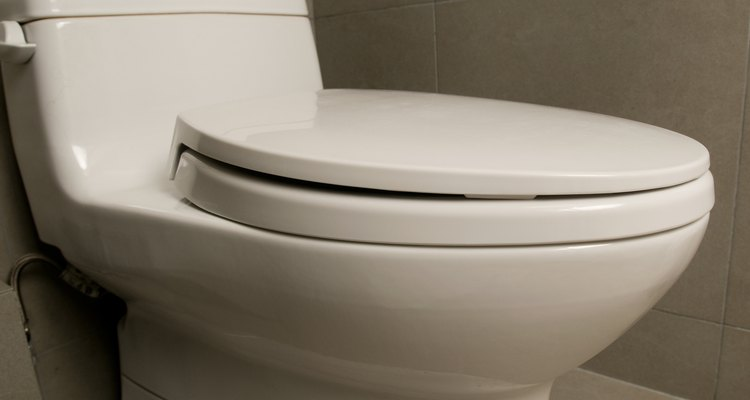Prepárate para pasar entre una y dos horas sustituyendo los tornillos del inodoro.