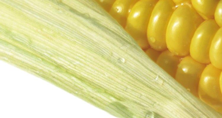 Deshidratar los granos es uno de los métodos para conservar y almacenar el exceso de maíz.