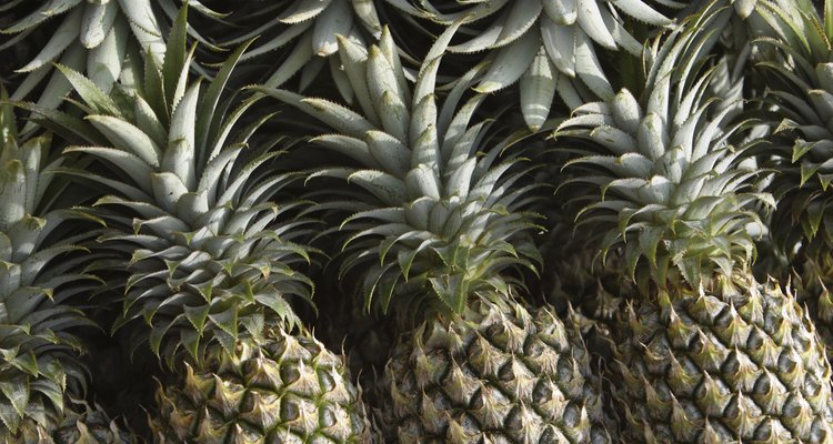 Make sure pineapple is fresh and good to eat.